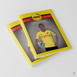 An image of copies of issue 13 of the Watford FC fanzine Golden Pages.